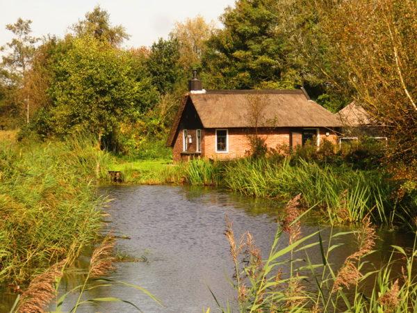 Huisje in de buurt van het Woldlakebos